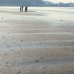 plucky fellows (Kahori YAGI_Kahoring) Tags: blue sea beach boys canon square seaside powershot paleblue