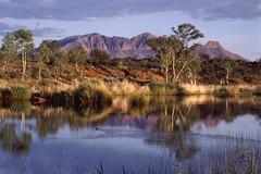 Mt Sonder reflection (Darren Schiller) Tags: centralaustralia outback macdonnellranges mountsonder reflection finkeriver alicesprings nature landscape northernterritory