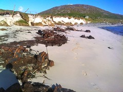 Barra Beach Car Wrecks