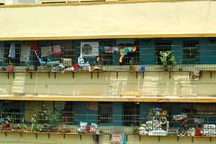 Mumbai Flats (Victoria Lea B) Tags: windows india window apartment houseplant flats mumbai apartmentbuilding plantpot potplant containerplant
