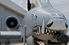A-10C Warthog (scattered1) Tags: museum mouth airplane nose virginia smithsonian dc washington districtofcolumbia paint day fighter republic force space aircraft aviation military air teeth group jet engine reserve social center event national f va cannon vehicle steven airforce hazy canopy hog base command fairchild pilot become nationalairandspacemuseum snout 2012 usairforce warthog chantilly a10 thunderbolt udvarhazy udvar avenger barksdale stevenfudvarhazycenter gau8 thunderboltii barksdaleairforcebase airforcereservecommand gau8avenger a10c becomeapilotday becomeapilotfamilyday 917th 917thfightergroup