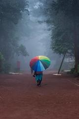 Matheran-4905 (Satish Chelluri) Tags: satishchelluri satishchelluriphotography matheran maharastra umbrella mansoon