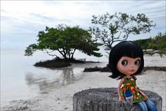 Isla Morada