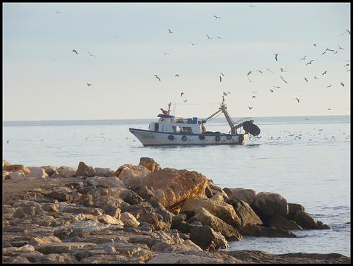 Barco pesquero Caleta de Vélez