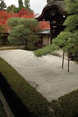 永観堂 京都の紅葉