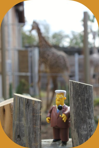 Kent Brockman from the new African Forrest wing at the Houston Zoo.