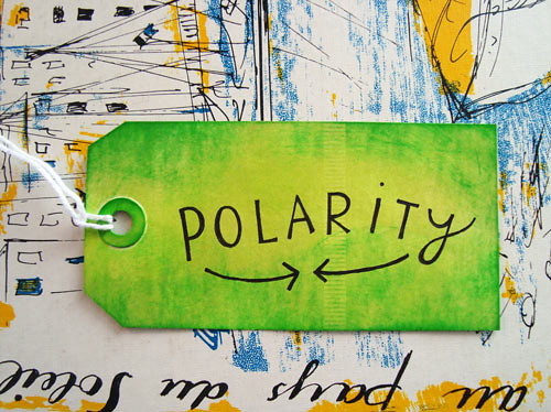 polarity-shop