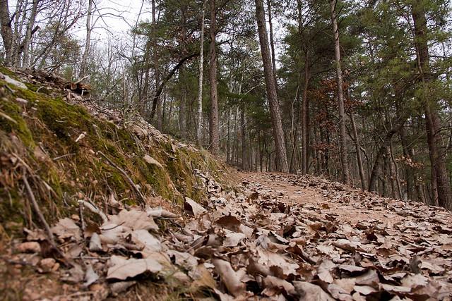 Sawnee Trail