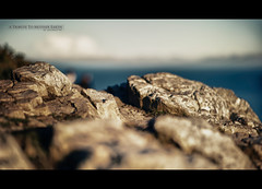 A Tribute to Mother Earth (Quicksil7er) Tags: ocean ireland howth cliff color rock composition bokeh tribute quicksil7er