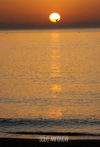 Amanecer playa Sole octubre 2010-4