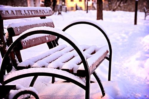Морозное настроение: скамейкино одиночество