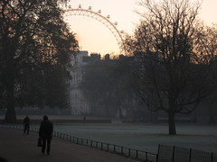 Sunrise at St James's Park, London (bobaliciouslondon) Tags: park leaves wheel st frozen frosty stjamesspark jamess frozenleaves frostyleaves eyemillenium parkstjamesparkjamesslondonnovembernovember 2010whitehallmodlondon