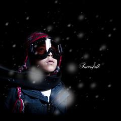 102/365 Snowfall (brandonhuang) Tags: snow black cold scarf dark flash goggles jacket snowfall goggle strobe strobist brandonhuang