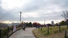 西郷山公園にお散歩