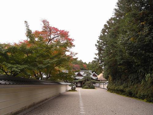 大和三門跡寺院の一つが特別公開『円照寺』@奈良市郊外