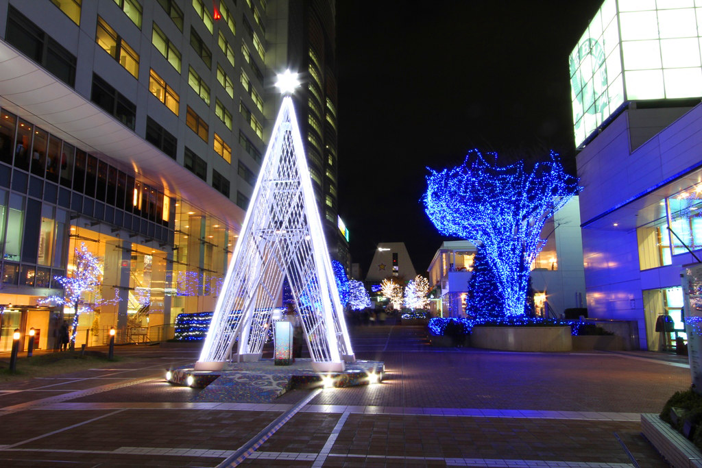Shinjuku Xmas illumination 2010 (1)