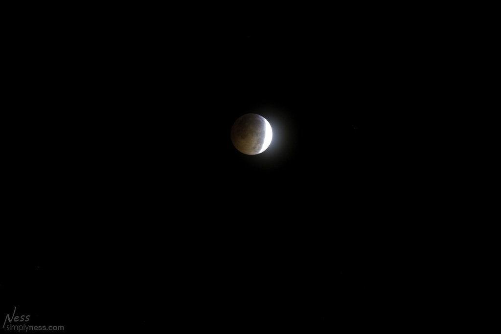 eclipse2010-3