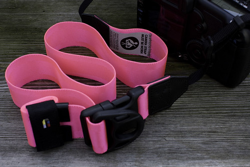 Camera strap, 2010