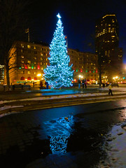 A Copley Merry Christmas! (brooksbos) Tags: lighting christmas city urban reflection tree night geotagged ma photography lights photo mr sony newengland cybershot bostonma copley backbay fairmont sonycybershot plaza bostonist bay masschusetts lurvely square back 02116 everyblock thatsboston fairmont copley dschx5v hx5v brooksbos