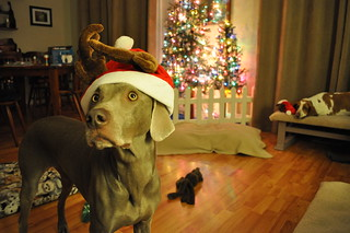 Santa.... do you need more help