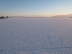 Zonsopkomst - Sunrise (naturum) Tags: netherlands geotagged december nederland diemen 2010 tweedekerstdag diemervijfhoek pregamewinner pregamesweepwinner geo:lat=5234792921 geo:lon=502844721 pregameduelwinner