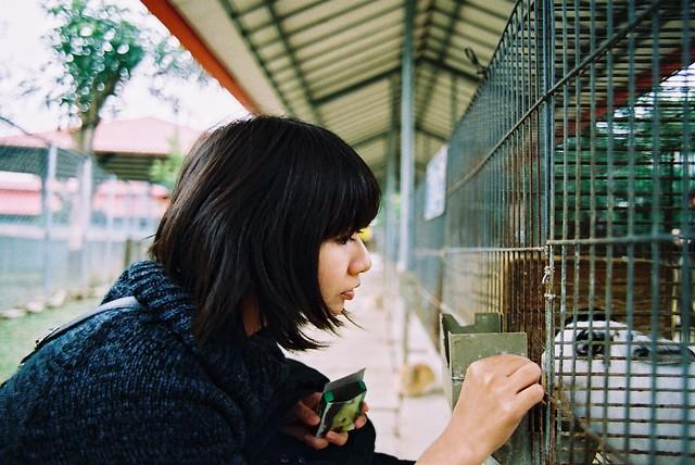 嘉義-獨角仙農場