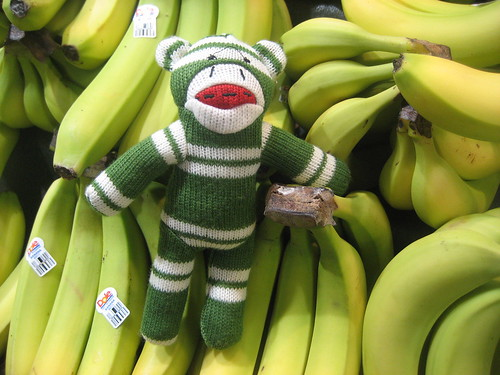 Sock Monkey goes grocery shopping