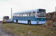 I think that it sets the rockery off nicely (Lady Wulfrun) Tags: corporation disused 1989 1980s scrap pennine vor cesarea silverstar rochdale withdrawn gwyneth caernarfon northwales outofuse pte selnec aecswift austinprincess austinambassador tdk547k welshindependent silverstarofcesarea
