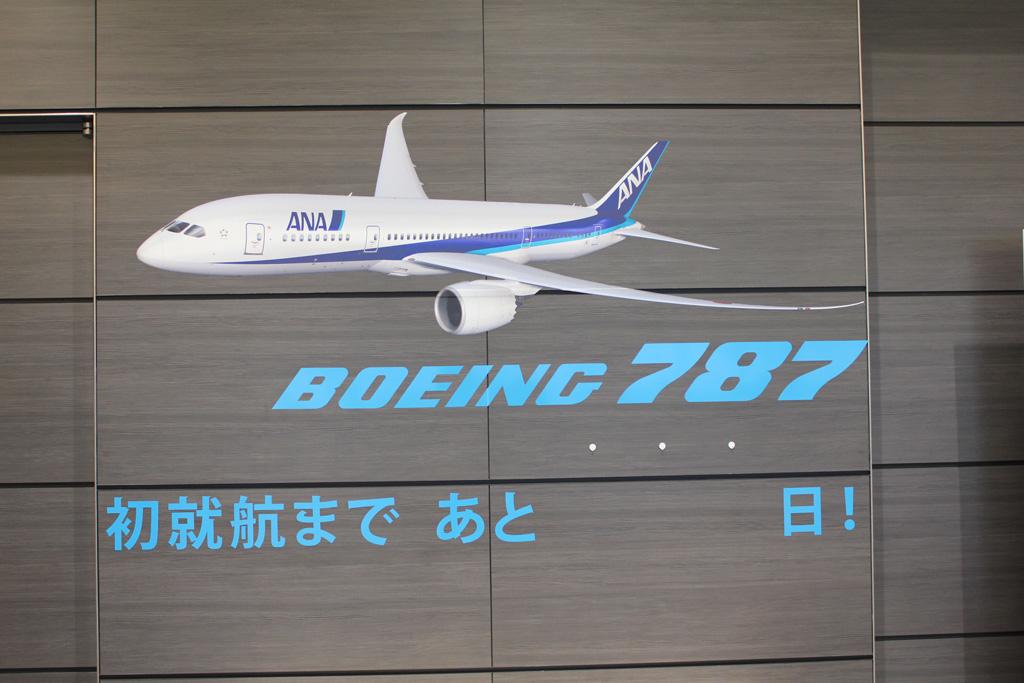 ANA Airplane Maintenance Center (07)