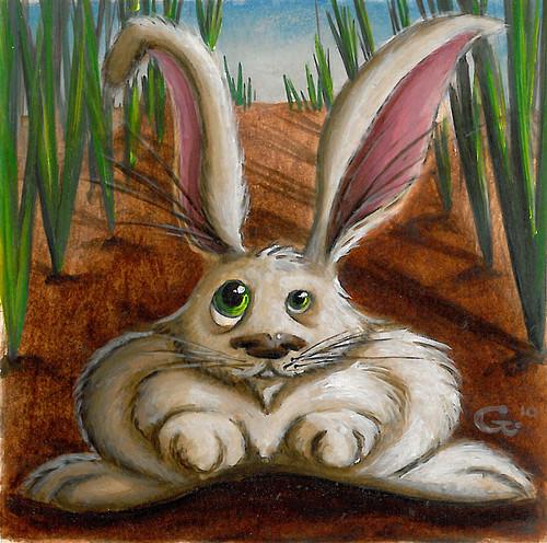 Quanza Bunny