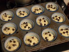 Orange Sour Cream Chocolate Chip Muffins