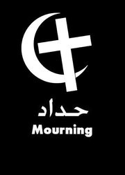 Facebook Profile Picture for Solidarity of Muslims and Coptic Christians