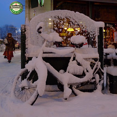 Heineken Life Below Zero Beer (Bn) Tags: life christmas street city winter brown white snow cold holland netherlands beer caf beautiful dutch amsterdam bike sign bar heineken cafe pub topf50 mood time sneeuw relaxing snowing snowfall letitsnow relaxed quaint topf100 mokum zero slippery