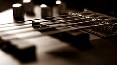 (BANG BANG!!!) Tags: life wood music inspiration art rock sepia madera arte bass guitar five bajo fingers jazz blues 25 sound musica instrument strings taurus washburn sonido frecuencia instrumento cuerdas