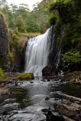 DSC_6527 (Janakajj) Tags: waterfall angle wide australia tasmania cradlemountain