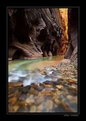 Narrows (Koveh Photography) Tags: light color green water canon river photography eos utah rocks canyon zion zionnationalpark narrows blackrock virginriver 1635 thenarrows ef1635 thevirginriver 5dmkii kovehphotography koveh