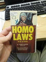 HOMO LAWS - A book of moderate gay porn masquerading as an informational guide about homosexuality and the law