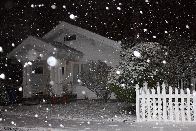 Snow at Night with Flash