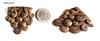 La Terra si fa Vento 12 (Alkhymeia) Tags: art handmade spirals polymerclay fimo clay artesania cernit polymer bijouterie artigianato ciondolo artigianale spirali bizuteria polimerica bigiotteria arcillapolimerica pastasintetica alkhymeia arfanotti