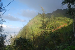 DSC_0277 (johnhane) Tags: temp park travel outdoors hawaii january delete hike trail kauai kalalau napali napalicoast 2011 kalalautrail haenastatepark