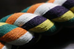 macro monday  in a row (parrotlady66..) Tags: macro monday row canon70d colorful rope toy macromondayoct3inarow