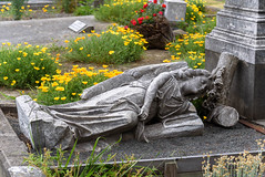 Laid to Rest (Jocey K) Tags: christchurch newzealand addingtoncemetery cemetery gravestones headsstones poppies earthquakedamge angel
