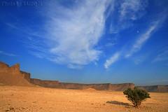 Tuwaiq Mountains - Explore (TARIQ-M) Tags: cloud mountains tree landscape desert riyadh saudiarabia hdr  canonefs1855    canon400d tuwaiq tuwaiqmountains