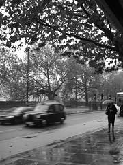 Millbank in the Rain (failing_angel) Tags: london water rain artgallery tate pimlico tatebritain millbank 091110