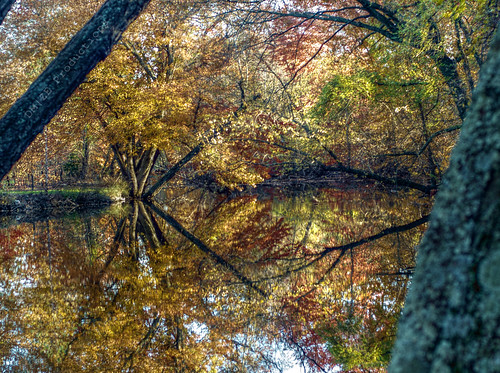 Photowalk 46 of 52 (Fall at Mirror Lake) - POTW