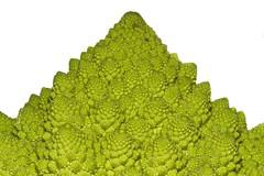 Mount Romanesco (khaosproductions) Tags: food macro vegetables canon photography broccoli things foodanddrink romanesco ef100mmf28macrousm romanescobroccoli romancauliflower 400d canoneos400d