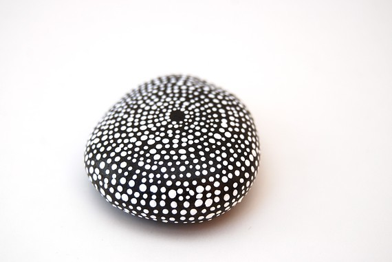 http://www.etsy.com/listing/59630908/sea-urchin-painted-stones-by-amy-komar