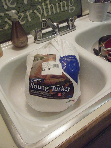hello, my name is young turkey.