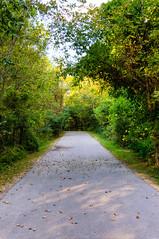 Peeler Park (mikerhicks) Tags: usa fall landscape geotagged unitedstates tn nashville hermitagehills peelerpark lincoyahills geo:lat=3619388872 geo:lon=8666096935