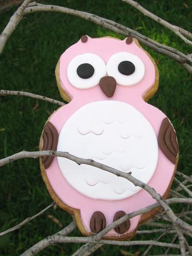 owl cookies (4)